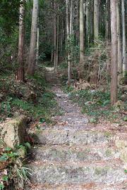 fukaiwa_2018_01_16_007.jpg