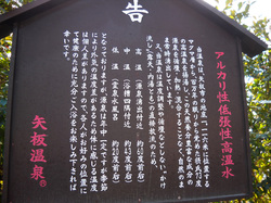 makoto_2014_008.jpg