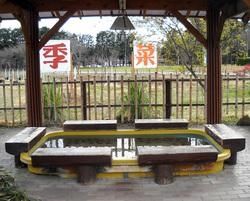 senbon_2013_12_006.jpg