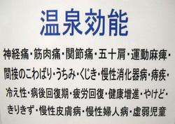 senbon_2013_12_012.jpg