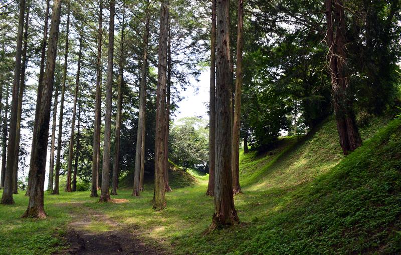 http://maywind.sakura.ne.jp/onsen/onsenblog/img/sakuyama_2014_07_005.jpg
