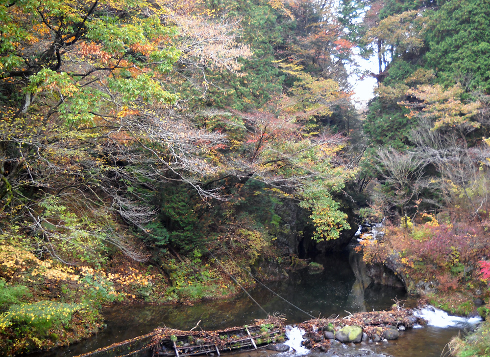 http://maywind.sakura.ne.jp/onsen/onsenblog/img/toba_2013_11_001.jpg